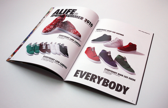 HIDDEN_alife_book_products.jpg